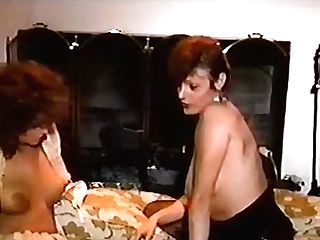 The Barmaid And The Bitch